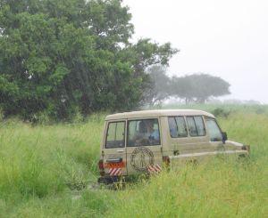 Der festgefahrene LandCruiser im Regen