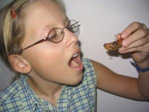 Bernice probiert eine Heuschrecke.