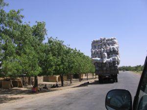 Eine kleine Ortschaft und ein hoch beladener Lastwagen.