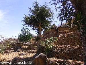 Am Hang, auf Terrassen angelegtes Dorf
